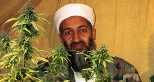 What Osama Bin Laden told his wife