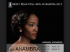 Miss Anambra wins Most Beautiful Girl in Nigeria 2015 700x473 theinfong.com